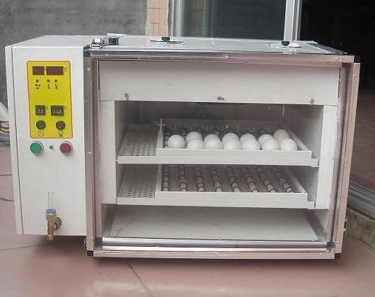 incubator with automatic egg turning