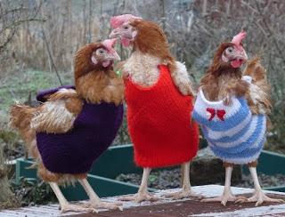 unusual knitted things