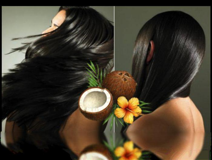 coconut oil for hair how to use on wet hair, reviews